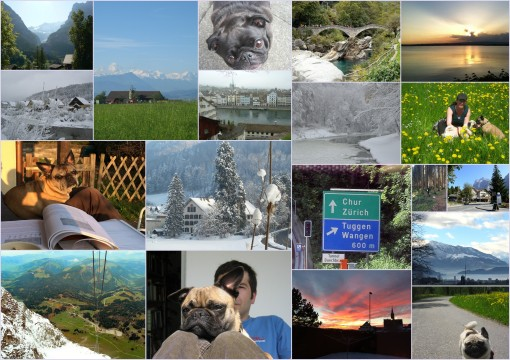 swiss collage